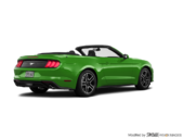 Need for Green w/ Ebony Racing Stripe
