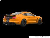 Orange furie