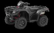 2019 Honda TRX500FA7 ***