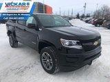 2019 Chevrolet Colorado WT  - $231.04 B/W