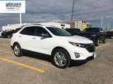 2019 Chevrolet Equinox Premier 1LZ  - $242.68 B/W