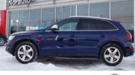 2014 Audi SQ5 V6T QUATTRO NAVI MAGS 21