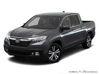 Ridgeline BLACK EDITION