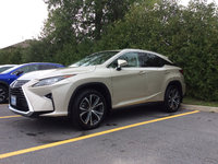 Lexus of Kingston service