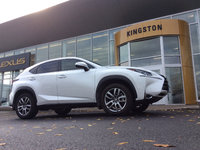 Service at Lexus of Kingston *Services Department*