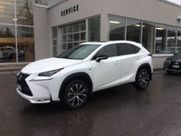Lexus of Kingston