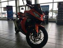 Kawasaki Motorcycle Ninja 300 Ninja ex 300  2016