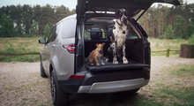 Land Rover launches animal accessories lineup