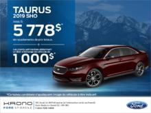 Ford Taurus 2019!