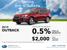 Get the 2019 Subaru Outback Today!