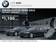 The Executive Demo Sale