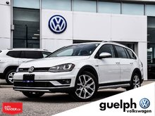 2017 Volkswagen GOLF ALLTRACK DEMO