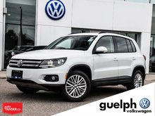 2015 Volkswagen Tiguan Special Edition With Pa