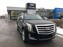 Cadillac Escalade ESV Luxury 2019