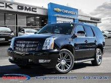 2013 Cadillac Escalade AWD  - $255.59 B/W