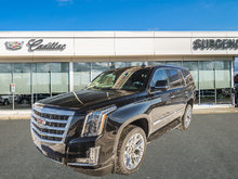 Cadillac Escalade Premium Luxury 2019