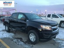2019 Chevrolet Colorado WT  - $215.02 B/W