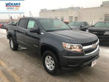 2019 Chevrolet Colorado WT  - $230.80 B/W