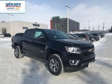 2019 Chevrolet Colorado Z71  - $258.11 B/W