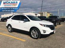 2019 Chevrolet Equinox Premier 1LZ  - $228 B/W