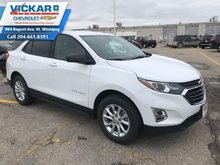 2019 Chevrolet Equinox LS  Only $175b/w!