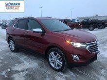 2019 Chevrolet Equinox Premier  - $239.96 B/W