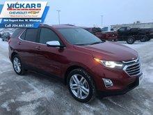 2019 Chevrolet Equinox Premier  - $239.38 B/W