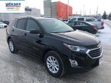 2019 Chevrolet Equinox LT 1LT  - $222.33 B/W