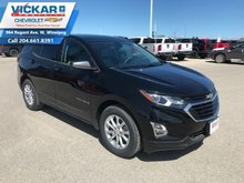 2019 Chevrolet Equinox LS  - $170 B/W
