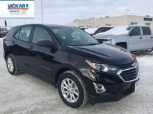 2019 Chevrolet Equinox LS  - $196.12 B/W