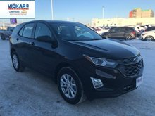 2019 Chevrolet Equinox LS  - $201.78 B/W