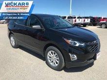 2019 Chevrolet Equinox LS  - $183 B/W