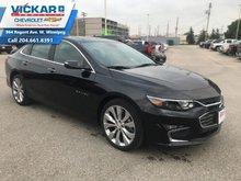 2018 Chevrolet Malibu Premier  - $217.36 B/W
