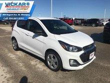 2019 Chevrolet Spark LS  - $112.94 B/W
