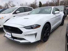 2019 Ford MUSTANG FASTBACK ECOBOOST PREMIUM