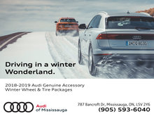 2018-2019 Audi Genuine Winter Wheel & Tire Packages