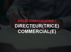 Directeur(trice) commercial(e)