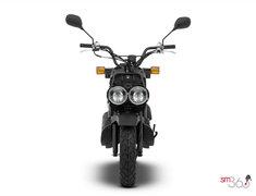 Honda RUCKUS STANDARD 2018