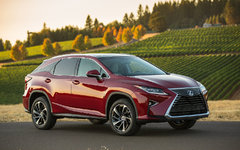 2019 Lexus RX : Popular For A Reason