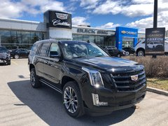 2019 Cadillac Escalade Premium Luxury  - Leather Seats