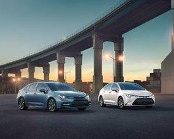 Hyundai Elantra 2020 vs Toyota Corolla 2020 à Amherst