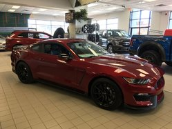 Ford Mustang GT-350 SHELBY CONVENIENCE PACKAGE  2017