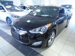 2014 Hyundai Veloster RCAM