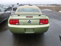 Ford Mustang Convertible  2005