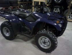 Honda TRX420PG