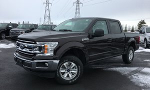 Ford F-150 4x4 - Supercrew XLT - 145