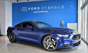Ford Mustang EXHAUST ROUSH+20'' RUFFINO+DROP+PROTEX FULL+++ 2016