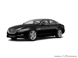 2019 Jaguar XJ 3.0L V6 AWD Portfolio