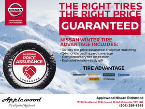 Nissan Winter Tire Advantage