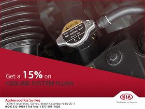 15% Off Cooling System Flush